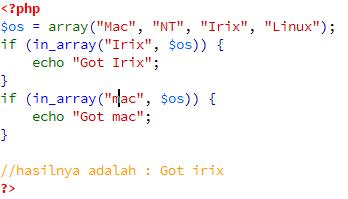 array-in-array-1-agung