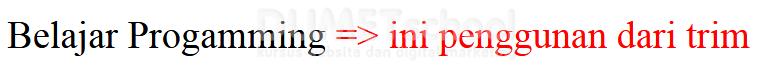 Mengenal Fungsi Dari Sintaq TRIM Pada PHP