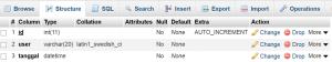 Cara Input Tanggal Otomatis Menggunakan PHP Mysql