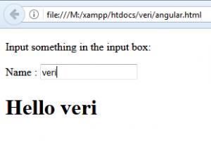 Cara Menggunakan ng-model Dalam AngularJS