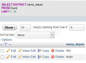 Cara Penggunaan Sql Distinct Pada Database