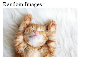 Cara Membuat Random Images Menggunakan PHP