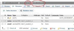 Cara Membuat Multi Input Data dengan PHP dan MySQL