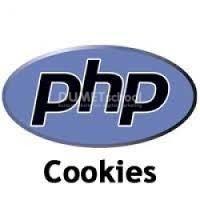 Cara Membuat Cookie Dan Menghapus Cookie Pada Website